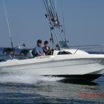 Lystfiskerens fangstjournal